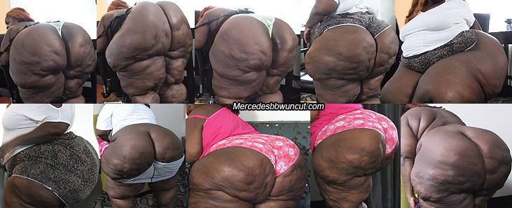 Big booty bbw free clips wmw